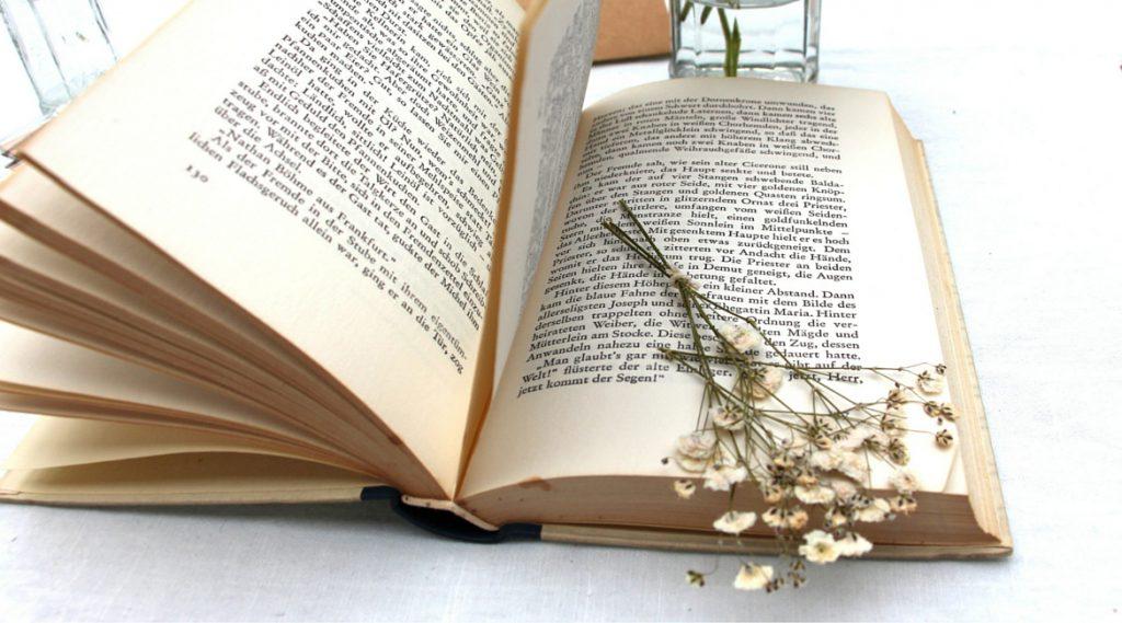 Schleierkraut kannst du in einem Buch trocknen.