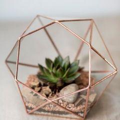 Ein Terrarium mit Kupfer ist perfekt für Sukkulenten.
